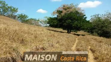 immobilier costa rica : annonce immobiliere à HOJANCHA Guanacaste au costa rica