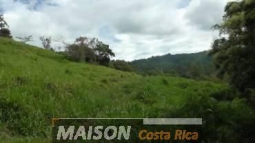 immobilier costa rica : annonce immobiliere à PLATANARES Puntarenas au costa rica