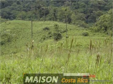 immobilier costa rica : annonce immobiliere à SARAPIQUI Heredia au costa rica