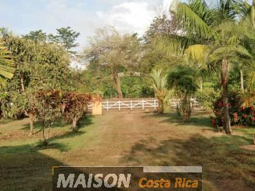 immobilier costa rica : annonce immobiliere à OJOCHAL Puntarenas au costa rica