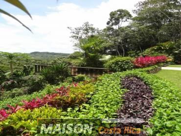 immobilier costa rica : annonce immobiliere à PLATANILLO Puntarenas au costa rica